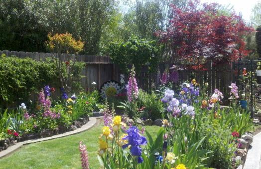 Pleasing Mn Landscape Designs The Best Cottage Gardens Balance Download Free Architecture Designs Scobabritishbridgeorg