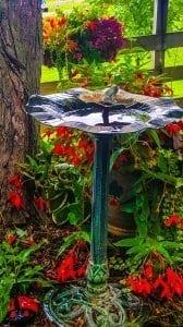 bird-bath-garden
